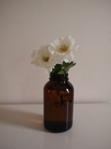 shiyakubin_flower_1